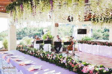 orzanezaciya-svadby-v-Krymu-1-1-374x249 Организация свадьбы в Крыму, картинка, фотография