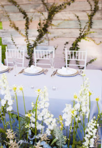 dekor-svadby-v-krymu-2-702x1024-209x305 Декор свадьбы в Крыму, картинка, фотография