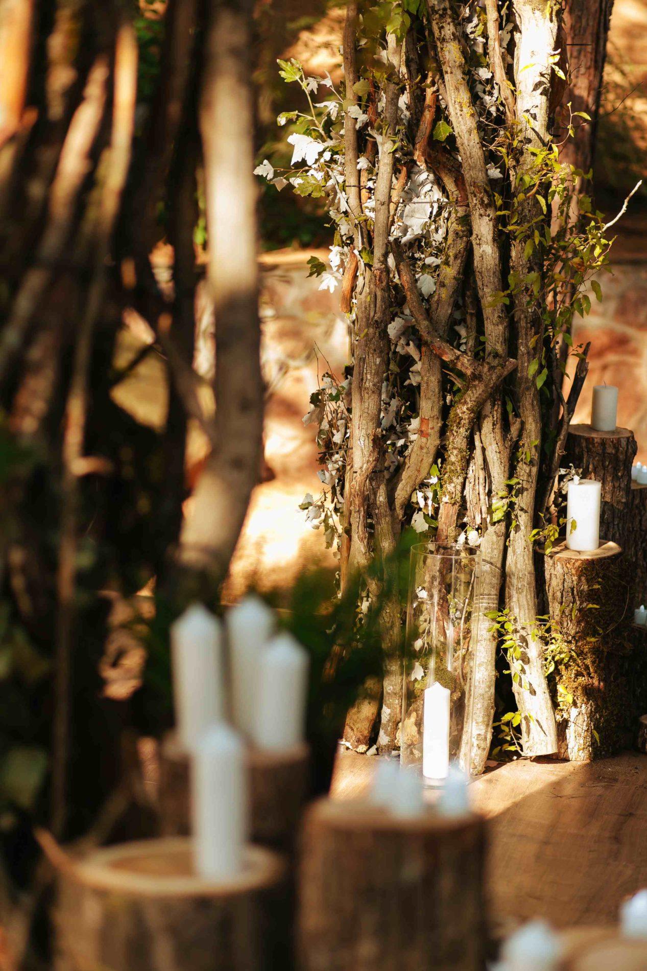 Выездная церемония в лесу Крым
