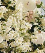 Флористика крыской свадьбы