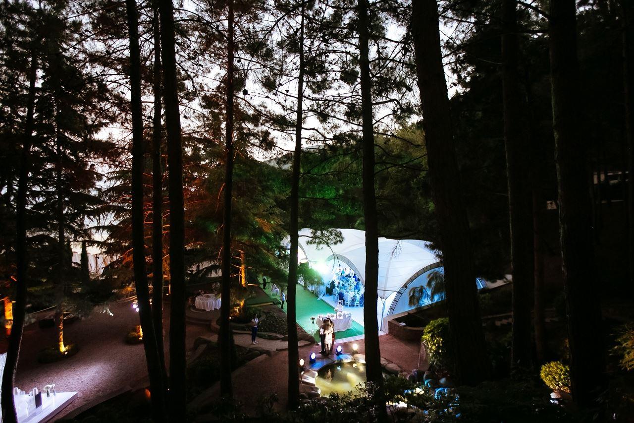 svadba-v-parke-ajvazovskogo-18 Свадьба в парке Айвазовского. Чем привлекательна эта площадка?, картинка, фотография