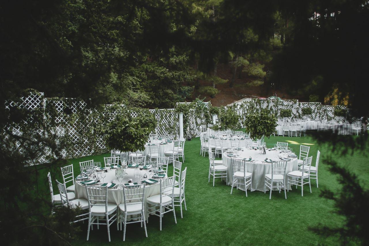 svadba-v-parke-ajvazovskogo-21 Свадьба в парке Айвазовского. Чем привлекательна эта площадка?, картинка, фотография