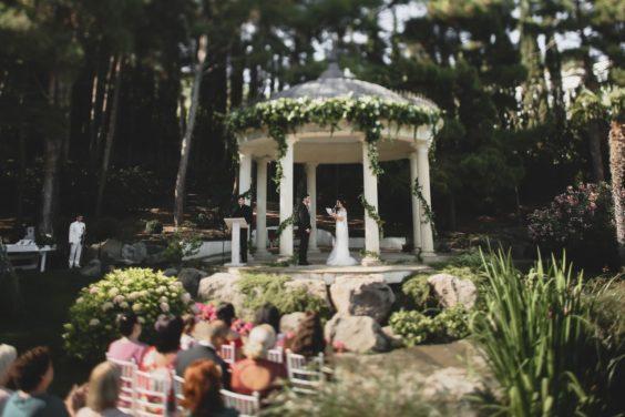 svadba-v-parke-ajvazovskogo-7-564x376 Свадьба в парке Айвазовского. Чем привлекательна эта площадка?, картинка, фотография
