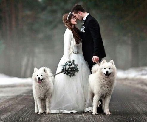 svadba-zimoj-fotosessiya-13-493x412 Свадьба зимой фотосессия, картинка, фотография