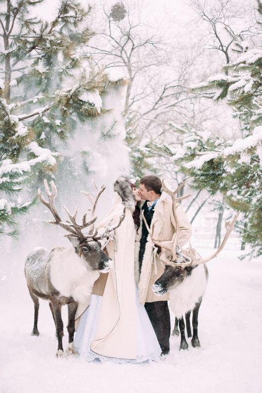 svadba-zimoj-fotosessiya-15 Свадьба зимой фотосессия, картинка, фотография